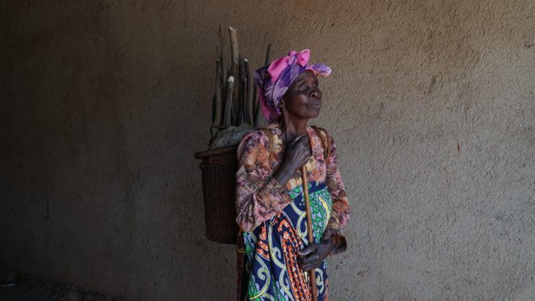Vuosikertomus kansi_Regina Kongosta